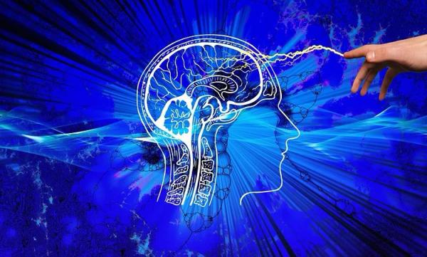 Учёные из России разработают технологию вживления микрочипов в мозг человека